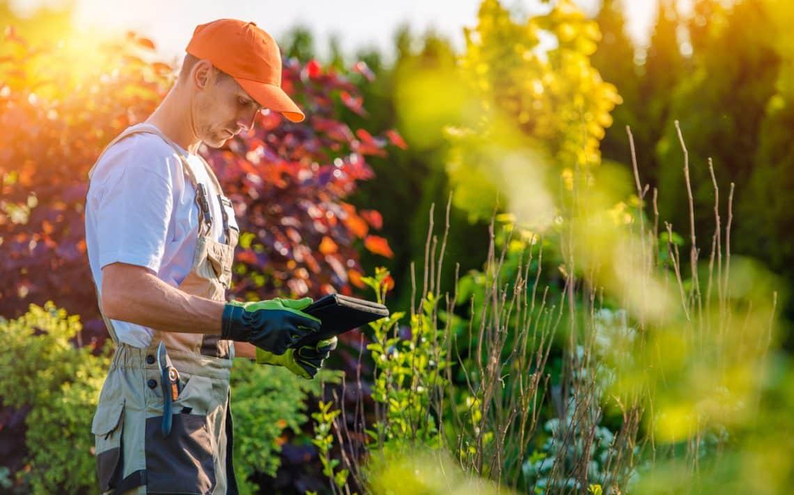 Un paysagiste à l'oeuvre